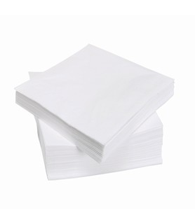 White Dinner Napkin 2 Ply 1000 Per Ctn